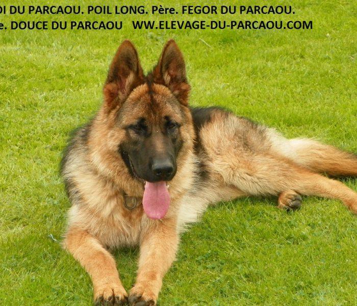 ISACK DU PARCAOU (63)